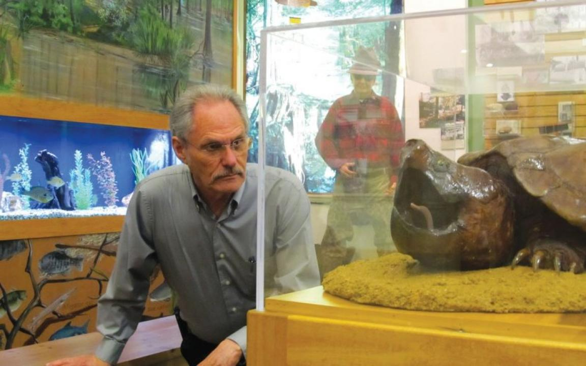 The Hatchie River Museum offers fun for adults and kids with fresh water aquariums and more.
