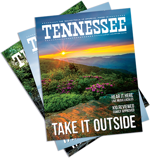 Virtual Experiences In Tennessee Tennessee Vacation